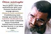 Ölüm mütləqdir , Ustad Əli Səfayi Hayiri